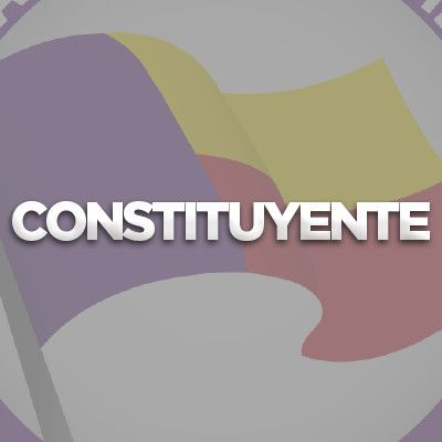 Resumen de Capacitacion Constituyente Virtual